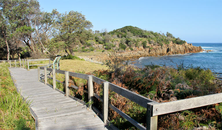 Mimosa Rocks walking track - Newcastle Accommodation