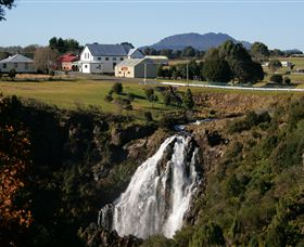 Waratah Falls - Newcastle Accommodation