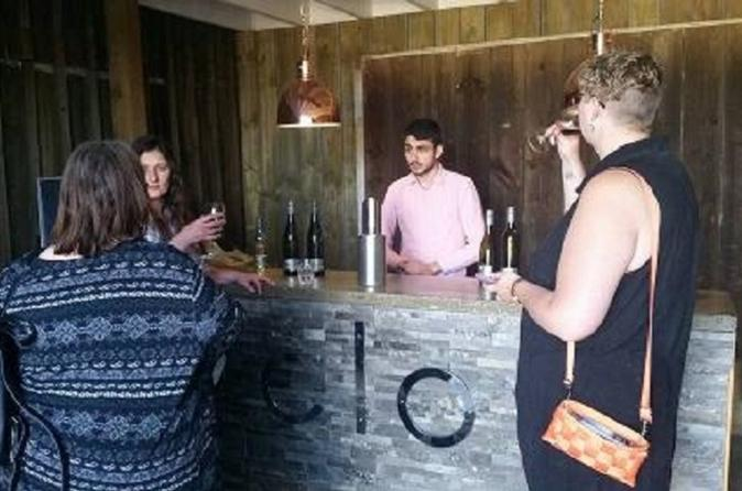Tamar Valley Food and Wine Day Trip from Devonport Ulverstone or Burnie - Newcastle Accommodation