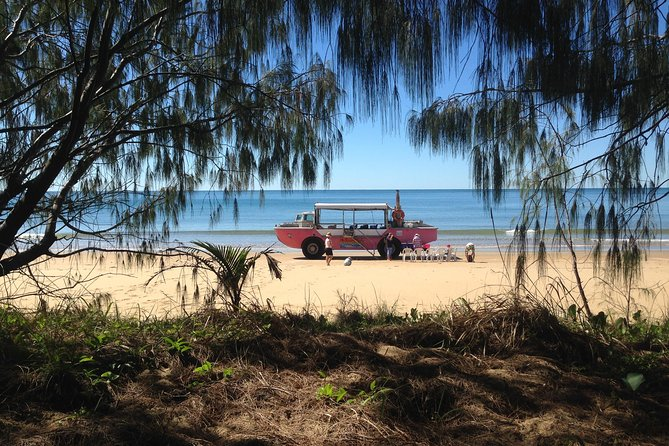 1770 Coastline Tour by LARC Amphibious Vehicle Including Picnic Lunch - Newcastle Accommodation