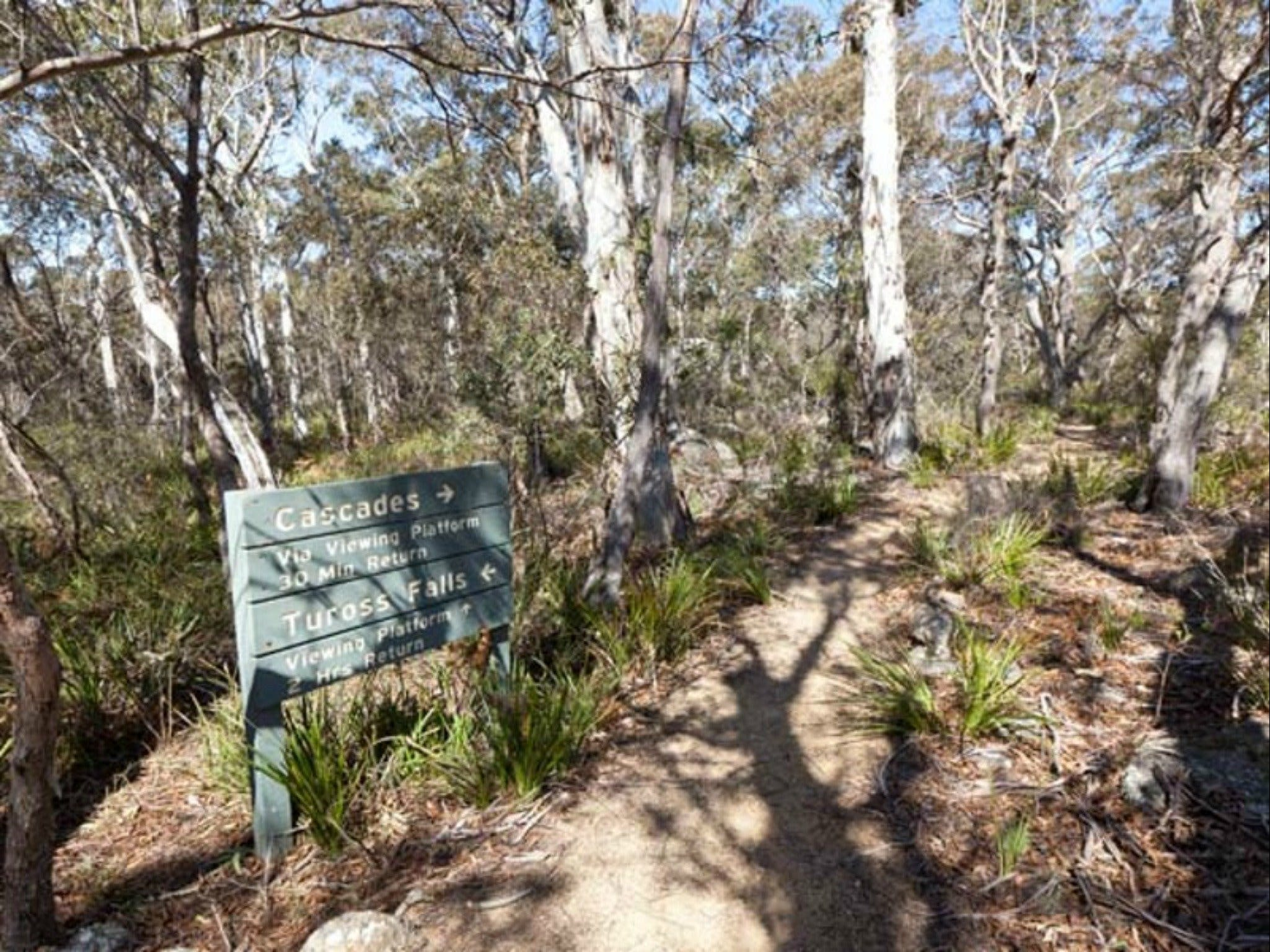 Cascades walking track and viewing platform - Newcastle Accommodation