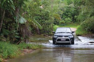 The Pioneer Valley and Eungella National Park - Newcastle Accommodation