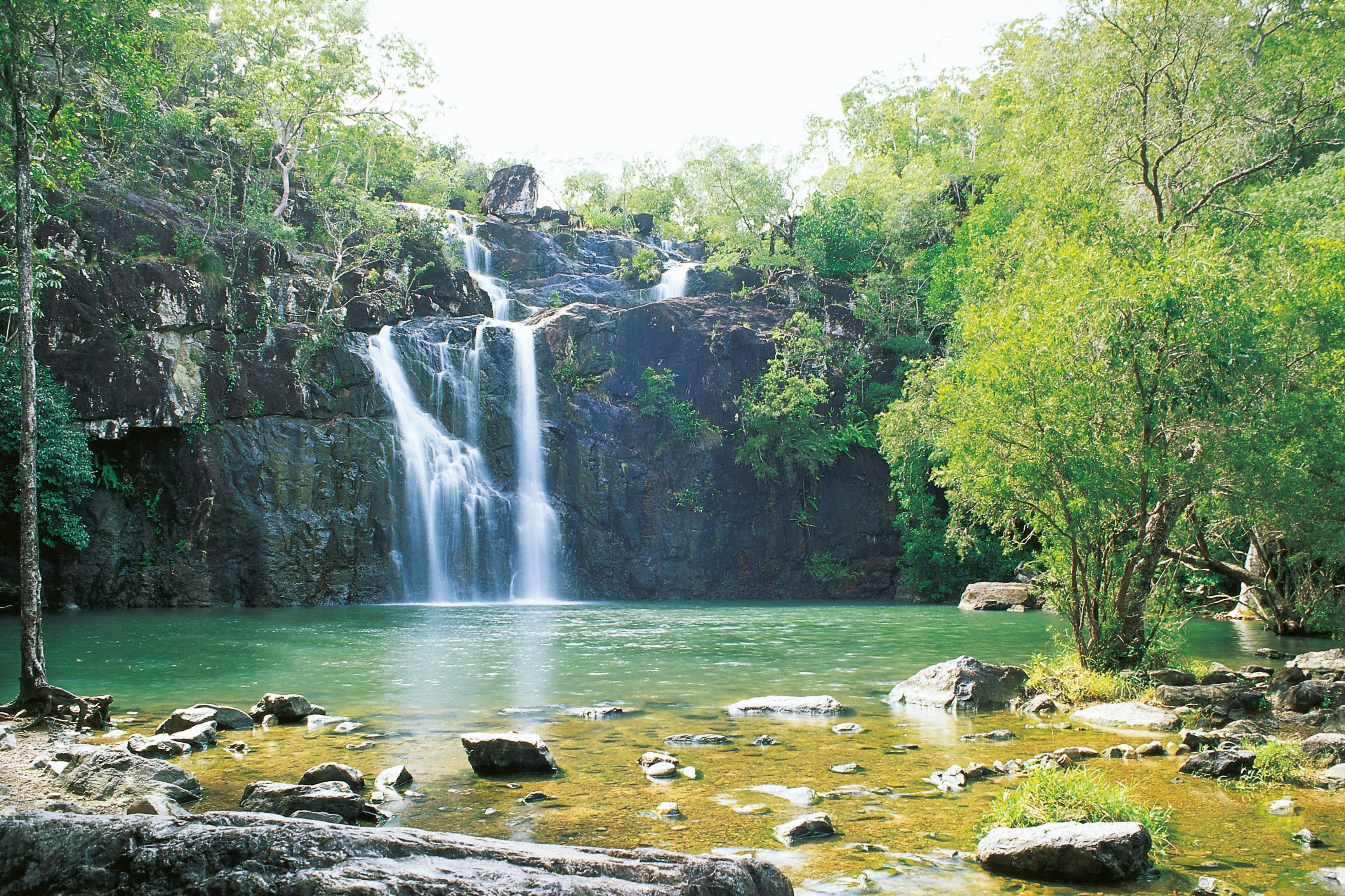 Airlie Beach to Cedar Creek Falls - Newcastle Accommodation