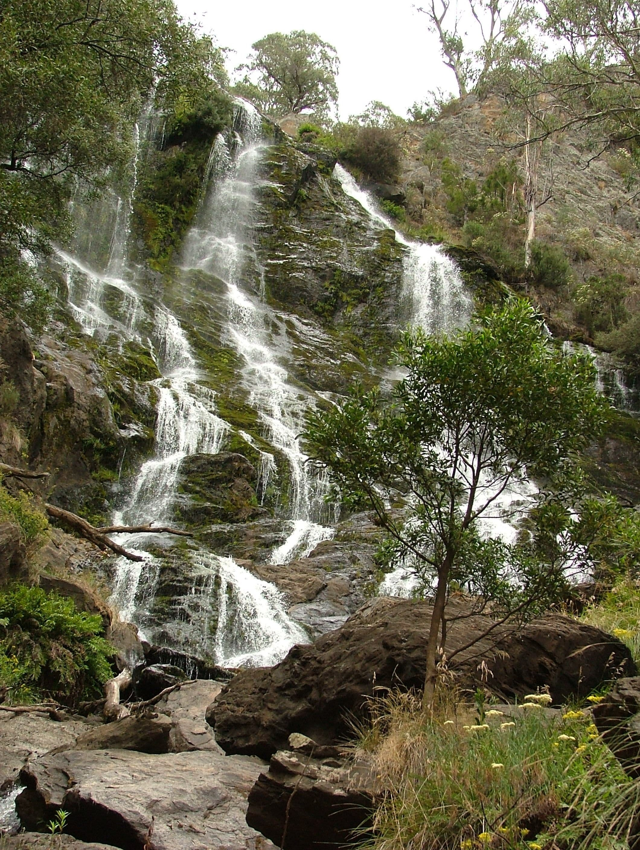 Buddong Falls Walking Track - Newcastle Accommodation