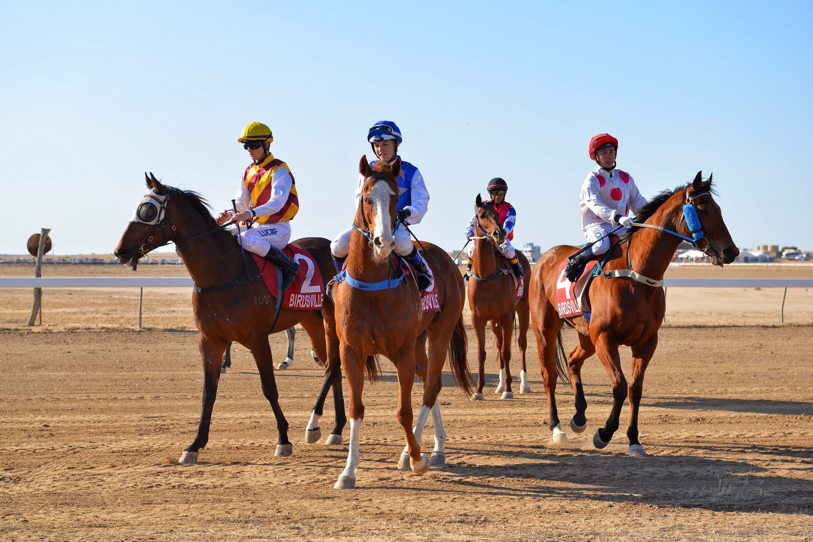 Simpson Desert Racing Carnival Trail - Newcastle Accommodation