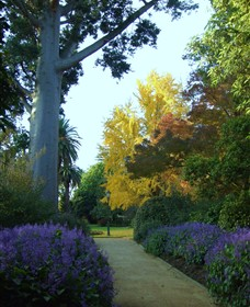 Albury Botanic Garden - Newcastle Accommodation