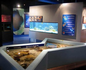Marine and Freshwater Discovery Centre - Newcastle Accommodation