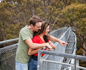 Valley of the Giants Tree Top Walk - Newcastle Accommodation