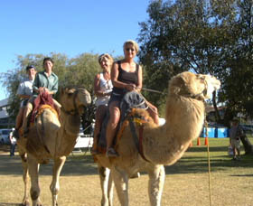 Calamunnda Camel Farm - Newcastle Accommodation