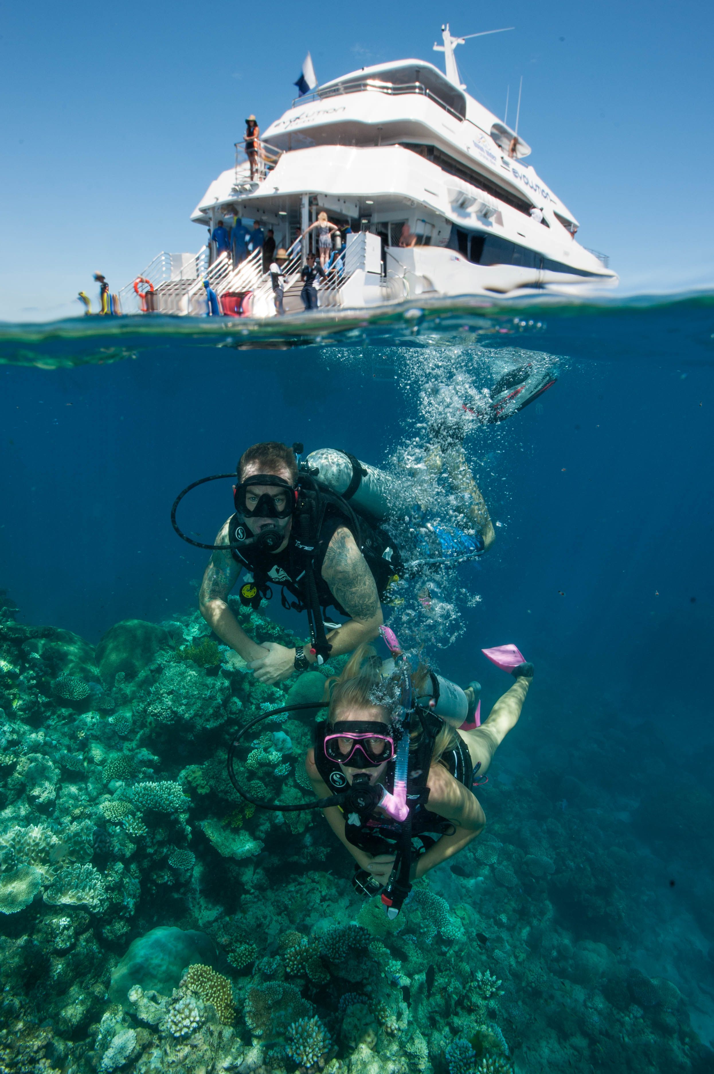 Down Under Cruise and Dive - Newcastle Accommodation