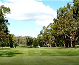 Cooma Golf Club - Newcastle Accommodation