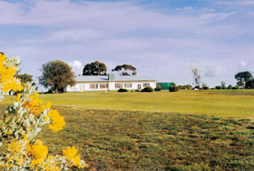 Lucindale Country Club - Newcastle Accommodation