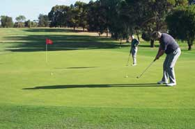 Waikerie Golf Club - Newcastle Accommodation