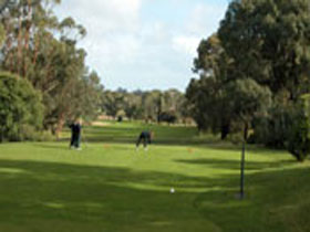 Mount Gambier Golf Club - Newcastle Accommodation
