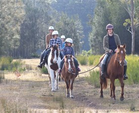Horse Riding at Oaks Ranch and Country Club - Newcastle Accommodation