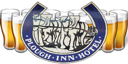 Plough Inn Hotel - Newcastle Accommodation