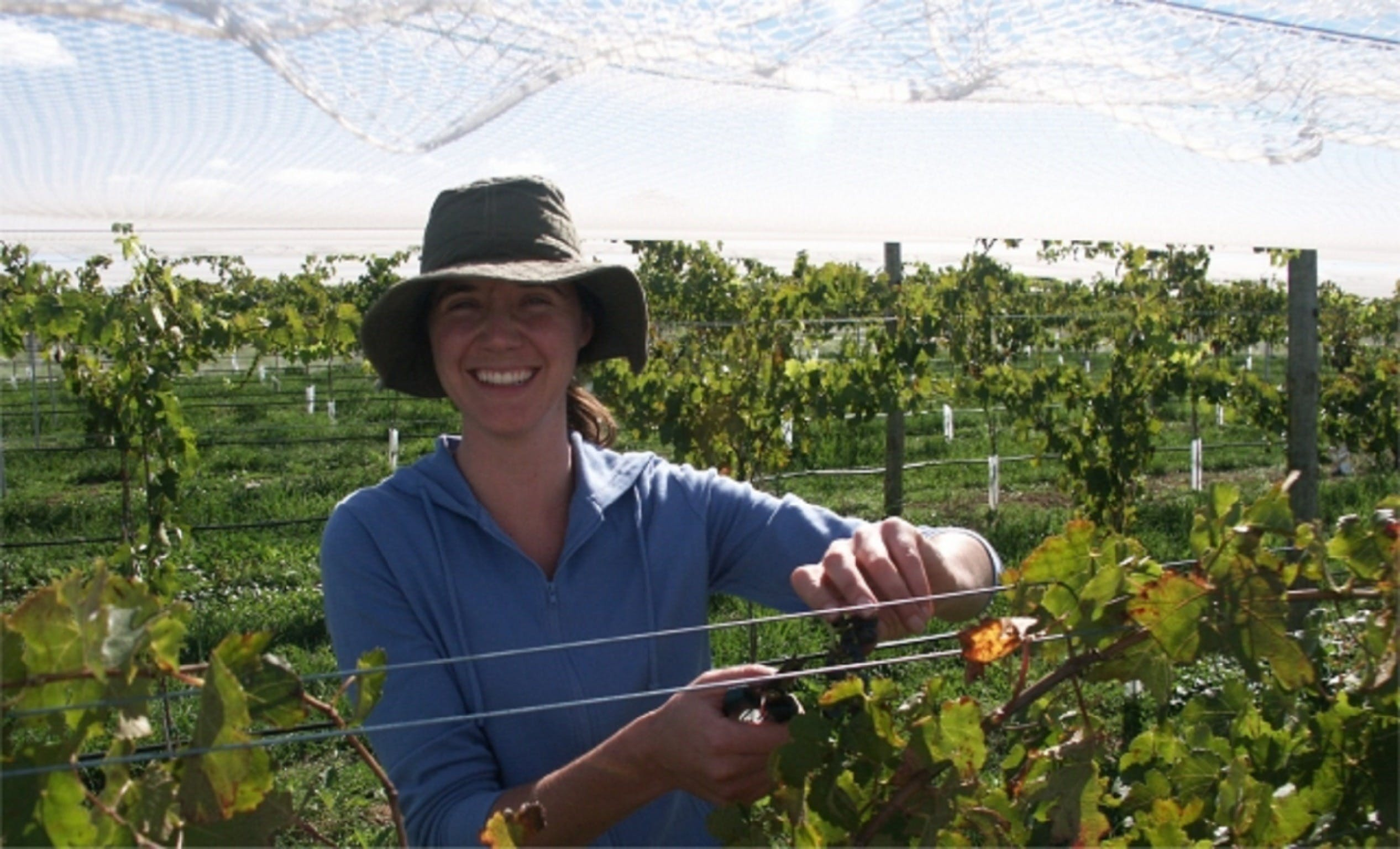 Kingsdale Wines - Cellar Door Wine Tastings - Newcastle Accommodation