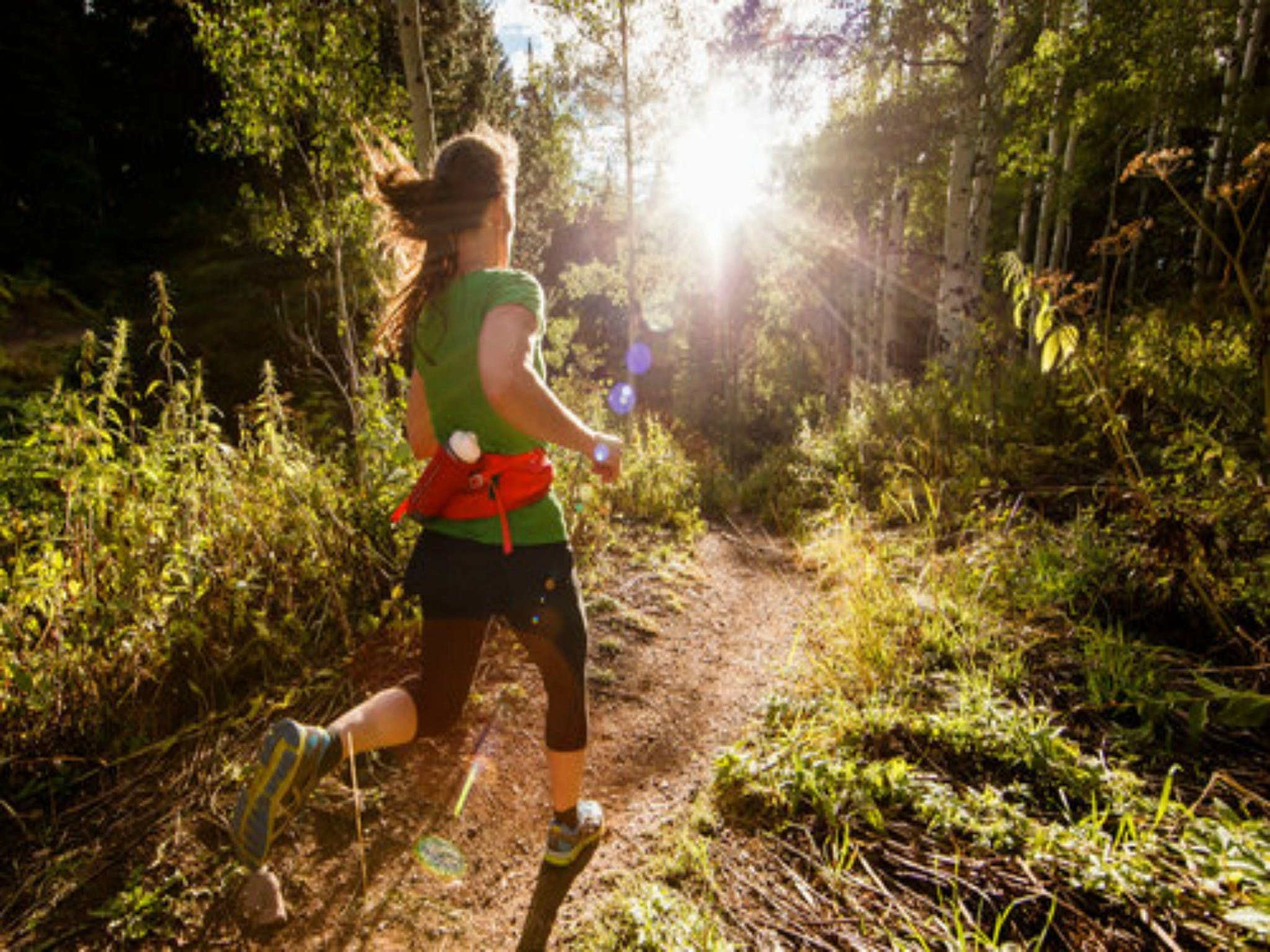 Run Dungog - Newcastle Accommodation