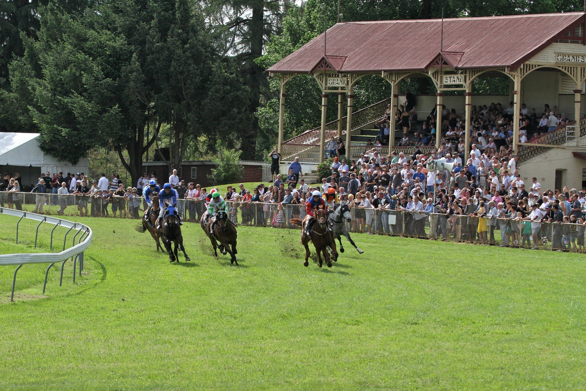Tumut Derby Day - Newcastle Accommodation