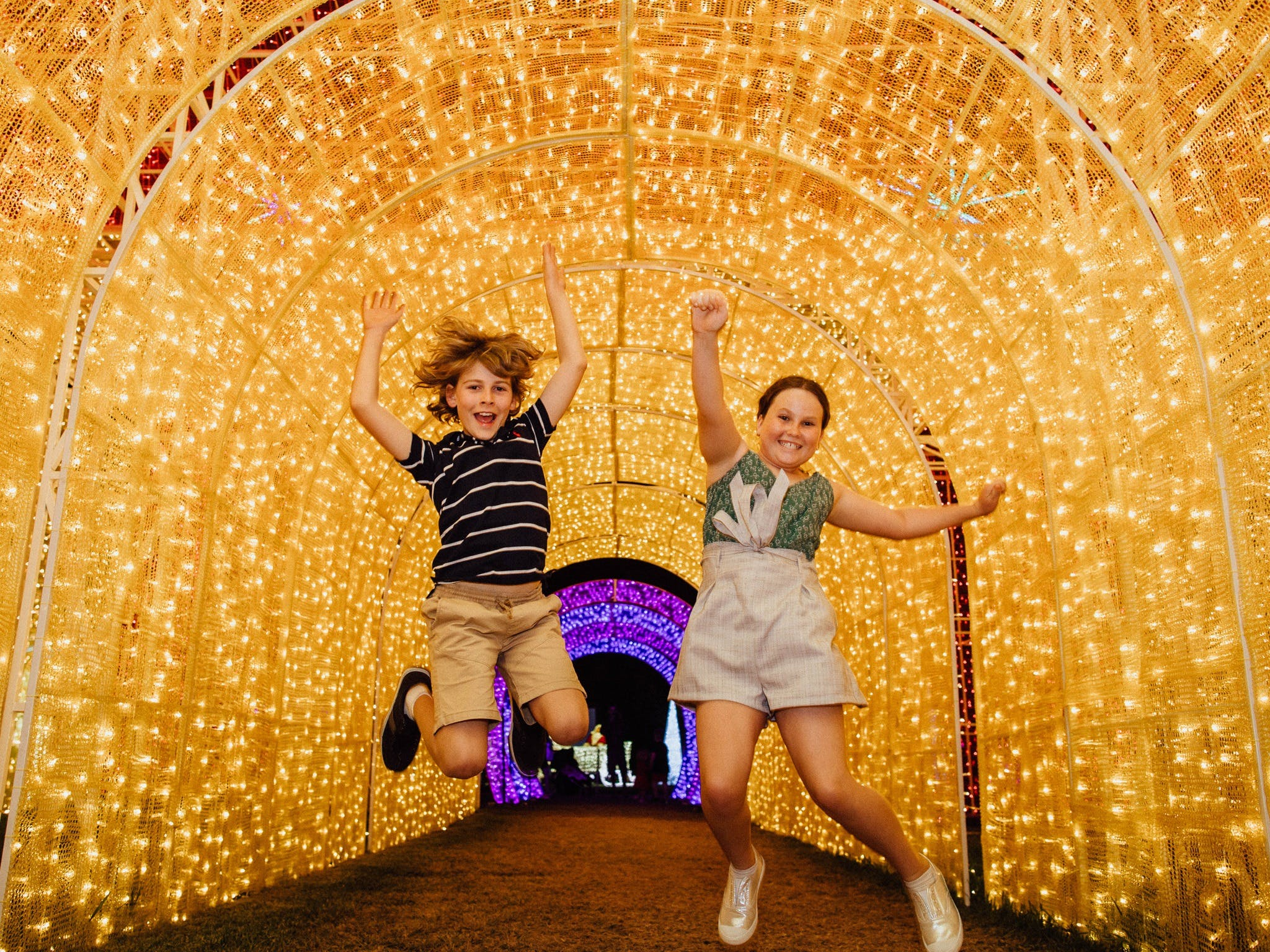 Christmas Lights Spectacular New Year's Eve at Hunter Valley Gardens - Newcastle Accommodation
