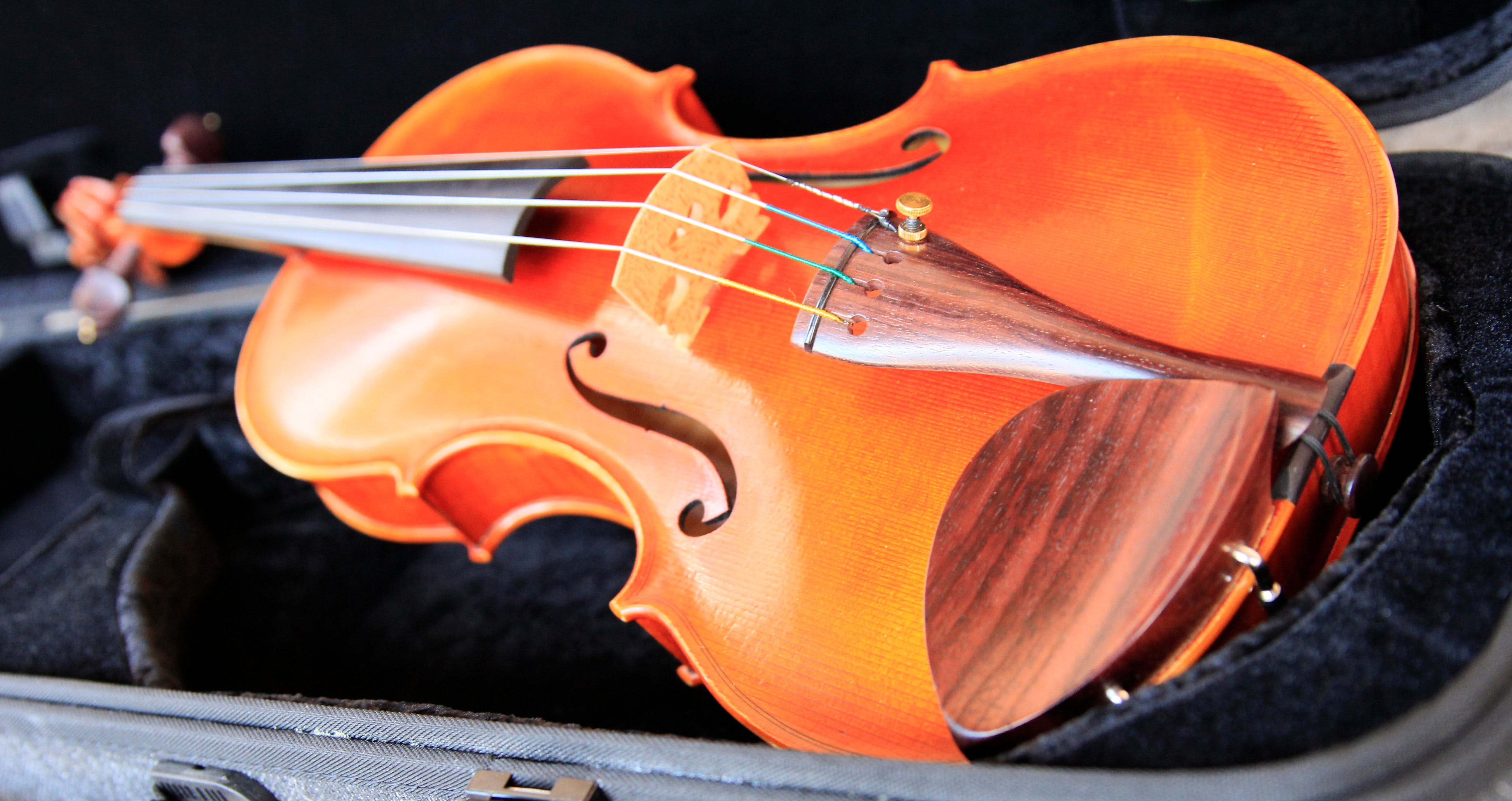 Kendall National Violin Competition Finals Weekend - Newcastle Accommodation