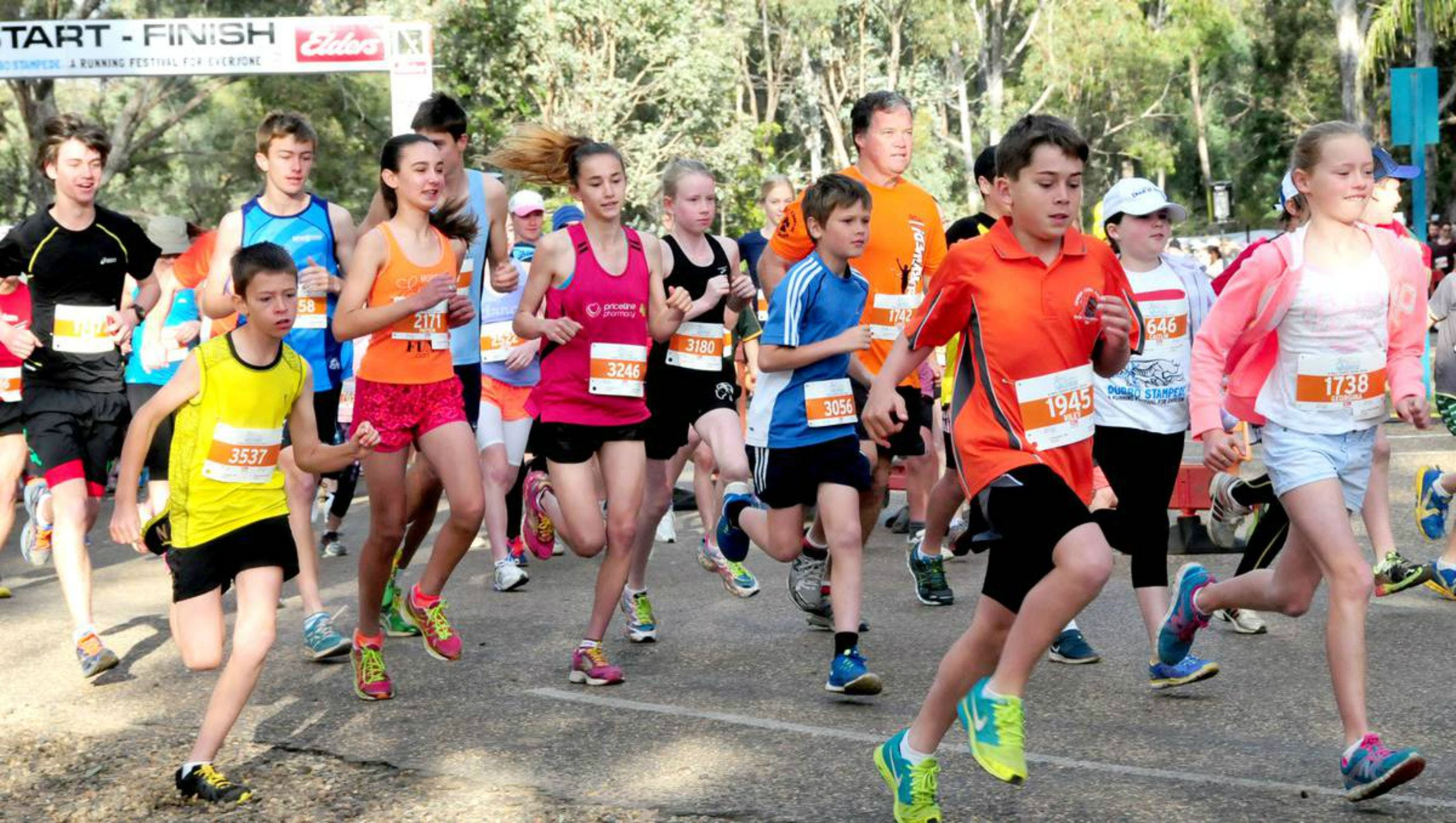 MAAS Group Dubbo Stampede Running Festival - Newcastle Accommodation