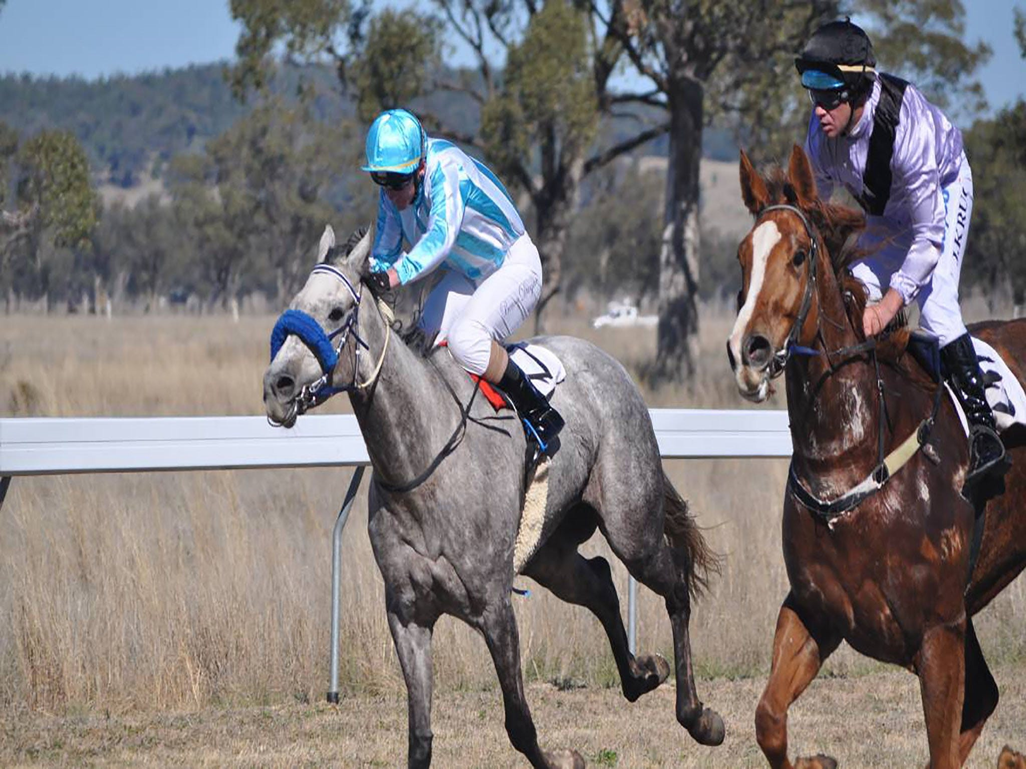 Wean Picnic Races - Newcastle Accommodation