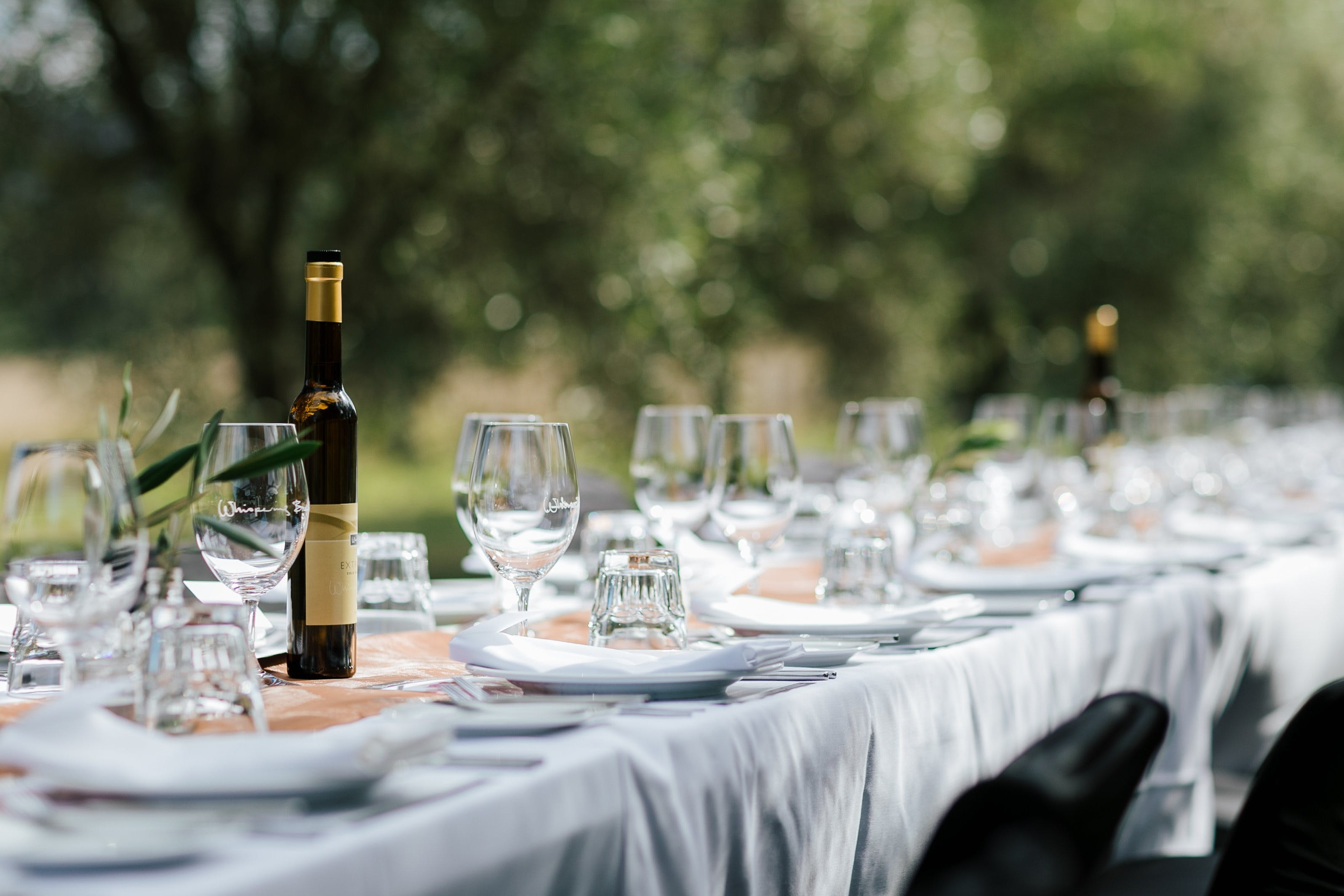 Whispering Brook Olive Long Table Luncheon - Newcastle Accommodation