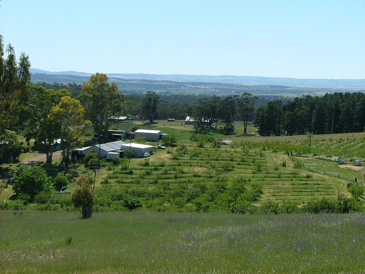 Taralee Orchards - Newcastle Accommodation